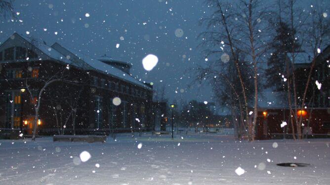 Alarmy i prognozy zagrożeń. Niebezpieczne mgły, opady śniegu i oblodzenia