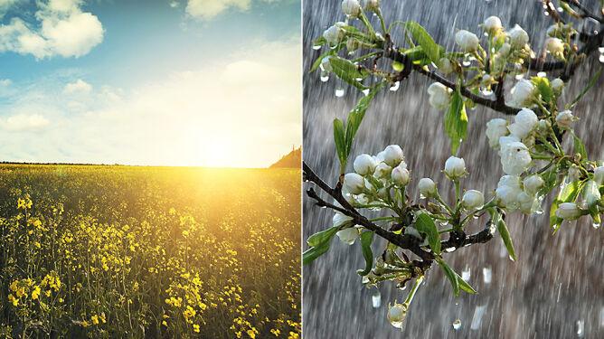 Prognoza pogody na pięć dni: czasem słońce, czasem deszcz. Trochę burz