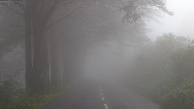 Uważajcie na drogach. Jazdę utrudniają mgły