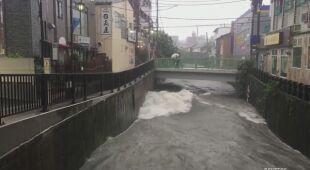 W Tokio tajfun spowodował ogromne zniszczenia